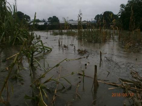 Deux cyclones dévastent le Centre Social Les Valeureuses